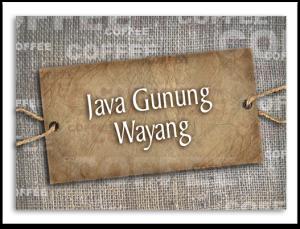 Java Gunung Wayang