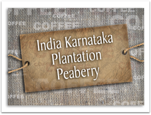 India Karnataka Plantation Peaberry