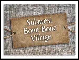 Sulawesi Bone-Bone Village