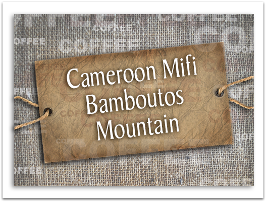 Cameroon Mifi Bamboutos Mountain